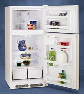 Energy Star Refrigerator
